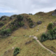 Te Mata Park Photo by Jan Kupka