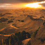 Te Mata Park View from the Peak